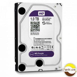 18463 Western Digital Purple 1tb