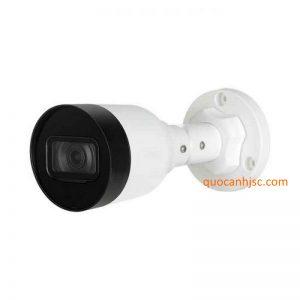 Camera IP dahua DS2431SFIP-S2