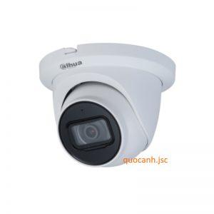 Camera IP dahua DS2431RDIP-S2 chính hãng